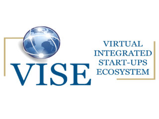 Proyecto VISE - 1st Newsletter